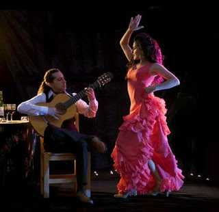 Madrid Wine Tours -Flamenco-class