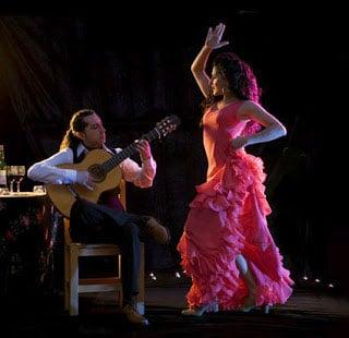 Madrid Wine Tours -Flamenco-class