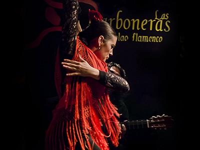 Flamenco in Madrid - las carboneras