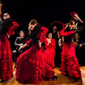 Flamenco Madrid en tablao las carboneras