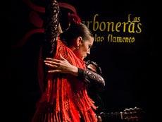 Group activities Madrid - Flamenco in Madrid