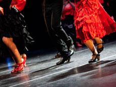 Group activities Madrid - Flamenco Class Madrid